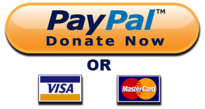 Donate-Now-Button-Visa-MC-and-Paypal